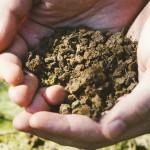 生ゴミなど有機性廃棄物を発酵処理するハザカプラント